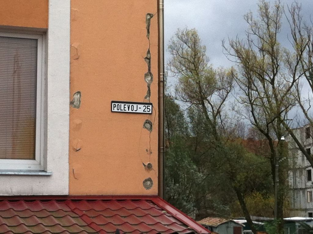 Панели из поливинилхлорида для отделки фасадов частных домов